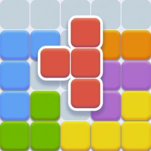 Nine Block Puzzle