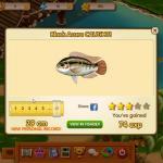 Fish Always Online